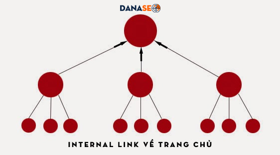don-internal-link-ve-trang-chu