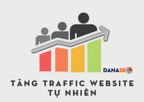 tang-traffic-website-tu-nhien